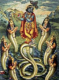 Kaliya Daman Naga