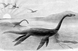 Niseag or Nessie