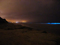 Example of Ocean Bioluminescence