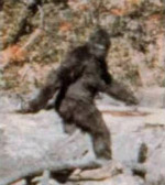 Roger Patterson film showing an unknown creature